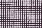 Gitternetz Baumwolle Farbe 347