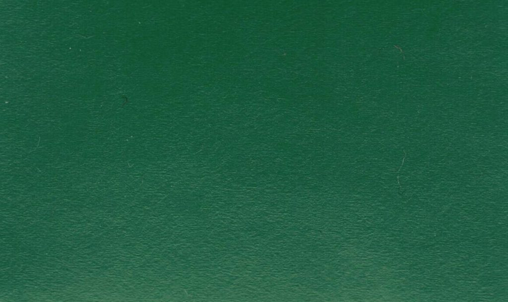 Tanzteppich Bolero grün